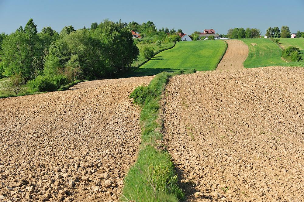 Cropland, Werbkowice-Zamosc, Sunsilks, Poland