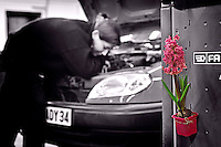 Fiddling about with cars is a manly occupation ? Not anymore ...<br /> Thanks to the 14 young women from the &quot;Garage au feminin&quot; created by Herve Malige.<br /> A gender that makes him see life in a funny pink, apparently..<br /> <br /> On the outskirts of Montpellier, he created an automobile concession fourteen employees of which are women.<br /> All of them were trained at the Herv&eacute; Malige's school of mechanics called &quot; the Base 34&quot;. They are also shareholders of the company.<br /> <br /> What is funny when we enter the garage is the children's corner ... and what a surprise ...its cleanliness!<br /> No duster lying around, no trace of oil on the ground.<br /> When you leave, a little note on the steering wheel with a flower sticked wish you &quot;Have a good trip!&quot;.<br /> <br /> Dans la banlieue de Montpellier, il a mont&eacute; une concession d'automobiles dont les quatorze salari&eacute;s sont toutes des femmes.<br /> Toutes sorties de l'&eacute;cole de m&eacute;canique d'Herv&eacute; Malige, la Base 34, elles sont &eacute;galement actionnaires de l'entreprise.<br /> <br /> Ce qui amuse, des que l'on p&eacute;n&egrave;tre dans le garage, c'est le coin enfant ... et ce qui interpelle ... c'est la propret&eacute;.<br /> Pas de chiffon qui tra&icirc;ne, ni de trace d'huile au sol.<br /> Quand on repart, un petit mot sur le volant vous souhaite bonne route. <br /> Avec une fleur gliss&eacute;e en travers.