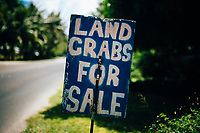 Land crabs for sale in Guam.