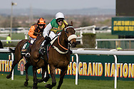 Jason Maquire on Ballabriggs approaches the finishing line as he wins the 2011 John Smith's Grand National.