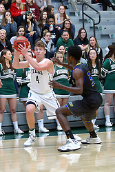 07 December 2016:  Andy Stempel passes off from Darius Brown during an NCAA men's division 3 CCIW basketball game between the North Park Vikings and the Illinois Wesleyan Titans in Shirk Center, Bloomington IL
