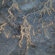 Mud detail with abstract texture