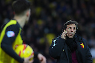 Picture by David Horn/Focus Images Ltd +44 7545 970036<br /> 14/12/2013<br /> Gianfranco Zola , Head Coach of Watford during the Sky Bet Championship match at Vicarage Road, Watford.