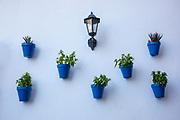 flower pots, blue and white, Spain; Arcos de la Frontera