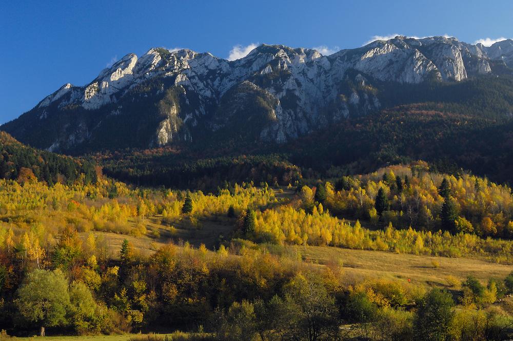 Piatra Craiului massif, National Park Piatra Craiului, Transylvania, Southern Carpathians, Romania