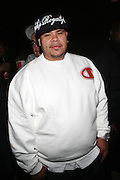 Fat Joe at ' Shooting Stars' Premiere during The 13th Annual UrbanWorld Film Festival sponsored by BET Networks held at AMC 34th Street on September 25, 2009 in New York City