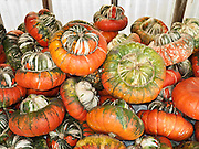 Orange, green and white Turban squash harvest is stacked for sale at a farmer's market in Minnesota, USA.