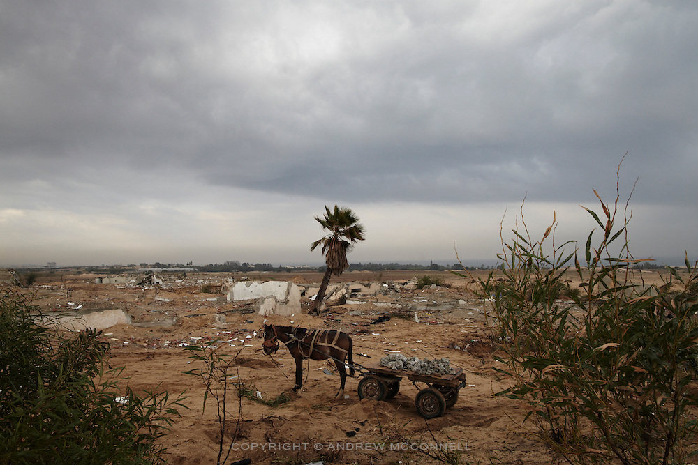 A horse and cart filled with rubble stand in the former Israeli settlement of Elei Sinai in Gaza's  northern buffer zone with Israel. Men and children come here daily to gather stones and rubble to sell for making concrete, even though the area is a no-go zone and dozens have been maimed and killed by Israeli snipers.