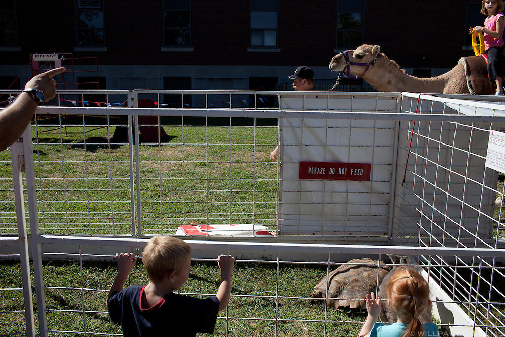 A petting zoo offered camel rides and exotic animals during the Little Balkans Days festival in Pittsburg, Kansas, Sep. 4, 2010.
