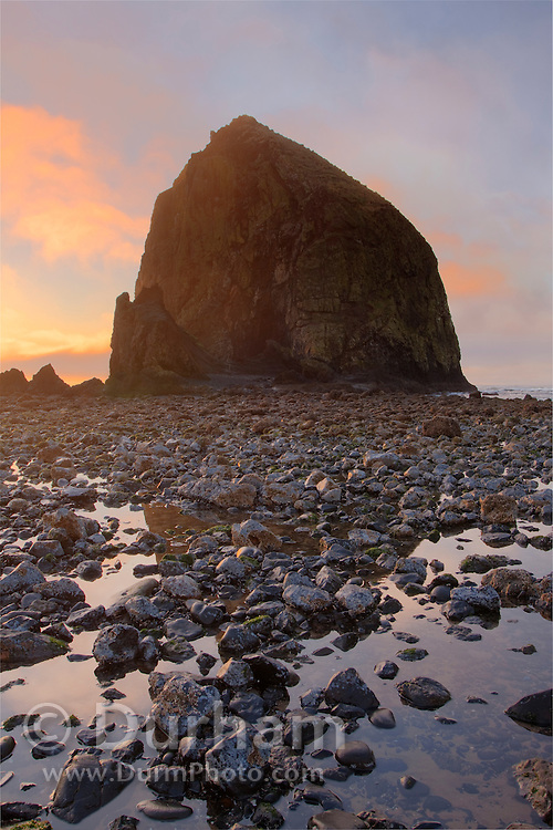 Haystack Rock, near Cannon Beach on the Oregon Coast. The basalt formation is a fragile habitat for unique coastal plants and marine birds. It is designated a Marine Garden, and is also part of the Oregon Islands National Wildlife Refuge.
