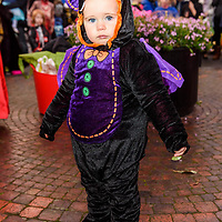 REPRO FREE<br /> Rudy Bartle from Kinsale pictured at this years Kinsale Halloween parade.<br /> Picture. John Allen