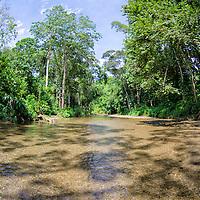 Rio del pueblo de Birongo, ubicado entre las poblaciones del Curiepe y Capaya, en la porción centro-norte de Venezuela. Birongo river, village located between the towns of Curiepe and Capaya, in the north central portion of Venezuela.