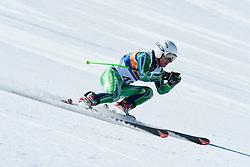 GOURLEY Mitchell, AUS, Downhill, 2013 IPC Alpine Skiing World Championships, La Molina, Spain