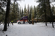 Northern Lights Inc. power company employees raise power and phone lines at my driveway for the Whitewood Transport truck carrying the 2017 Capitol Christmas after it left the Historic Upper Ford Ranger Station, where the engelmann spruce selected was cut down in the upper Yaak Valley. Kootenai National Forest in the Purcell Mountains, northwest Montana.