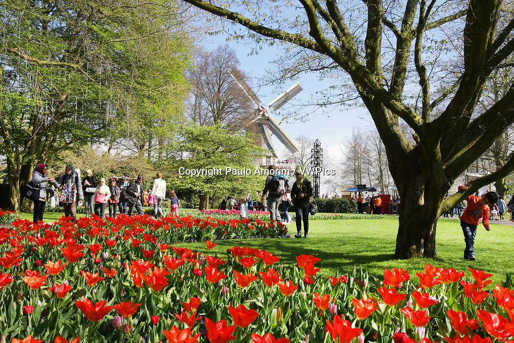Daily Life - People enjoying at Keukenhof Park on April 4, 2017 in Lisse,Netherlands. Keukenhof known as the Garden of Europe, a spring park with approximately seven million flower bulbs.