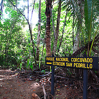 COSTA RICA : RAINFOREST, WILDLIFE, PACIFIC OCEAN, NATURE