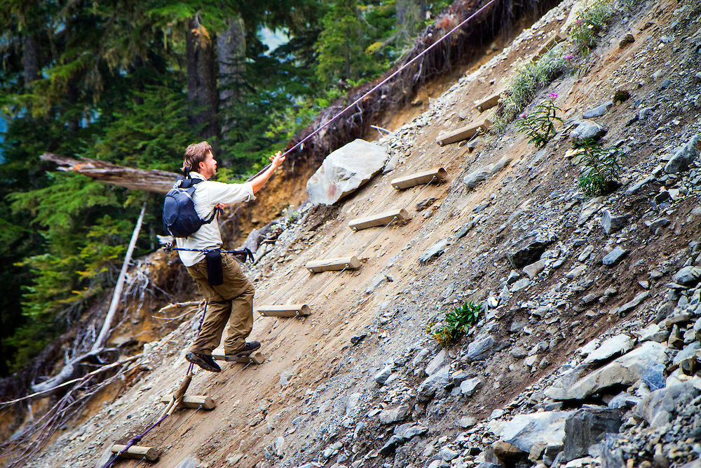 "After a portion of trail washed out, a ""ladder"" was put in place for hikers to continue on the trail.The Hoh River trail in Olympic National Park starts in the mossy and lush Hoh Rain Forest. From there you climb over 5,000 ft. in elevation along towering trees and rock to overlook the windswept Blue Glacier on Mt. Olympus. Tracing your steps back to the Hoh River visitors center the hike covers over 36 miles of diverse climate and ecosystems ranging from temperate rain forest to alpine."
