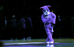 Philadelphia 76ers mascot Franklin the Dog performs a dance during the NBA London Game 2018 at the O2 Arena, London. PRESS ASSOCIATION Photo. Picture date: Thursday January 11, 2018. See PA story BASKETBALL London. Photo credit should read: Simon Cooper/PA Wire. RESTRICTIONS: Editorial use only, No commercial use without prior permission