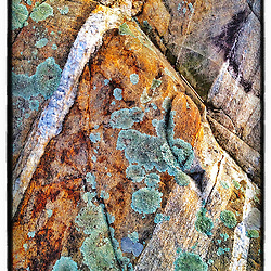 "Lichens on rock ledge next to Little Harbor in Portsmouth, New Hampshire. iPhone photo - suitable for print reproduction up o 8"" x 12""."