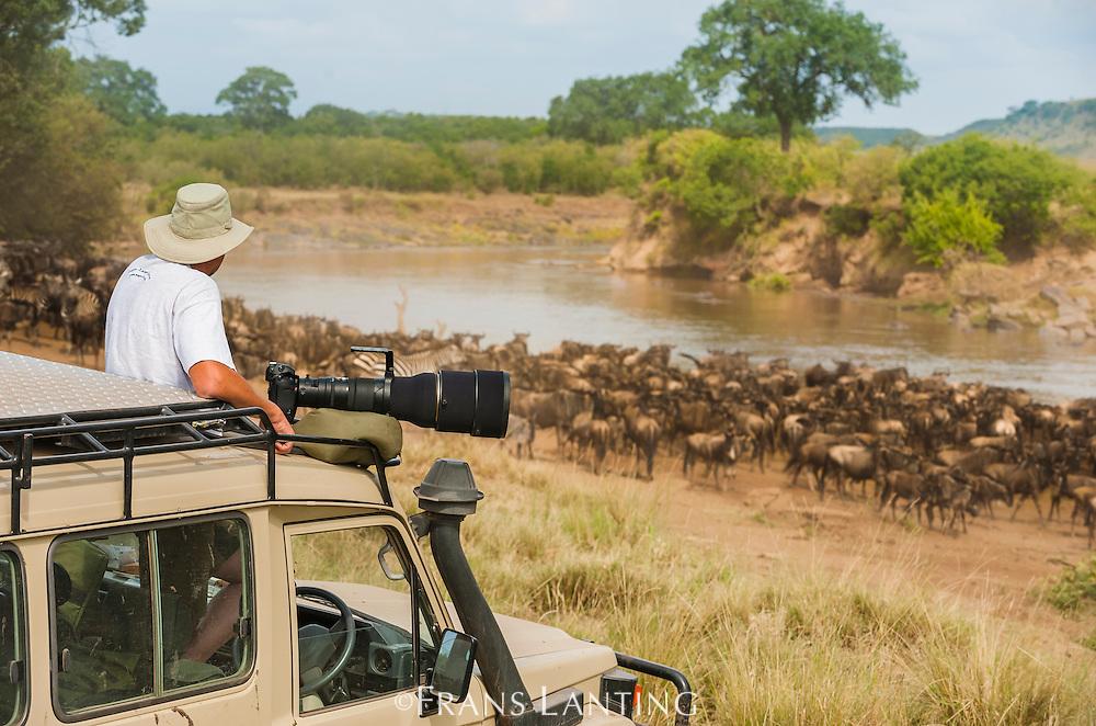 Photographer watching wildebeest getting ready to cross the Mara river, Masai Mara National Reserve, Kenya