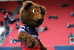 Brizzley Bear mascot dances- Mandatory by-line: Nizaam Jones/JMP - 19/01/2019 - RUGBY - Ashton Gate Stadium - Bristol, England - Bristol Bears v Enisei-STM - European Rugby Challenge Cup