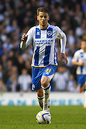 Andrea Orlandi of Brighton and Hove Albion during the Sky Bet Championship play off semi final first leg at the American Express Community Stadium, Brighton and Hove<br /> Picture by David Horn/Focus Images Ltd +44 7545 970036<br /> 08/05/2014
