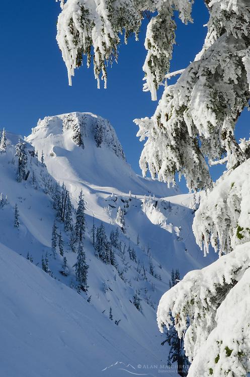Table Mountain in winter, Heather Meadows Recreation Area, North Cascades Washington