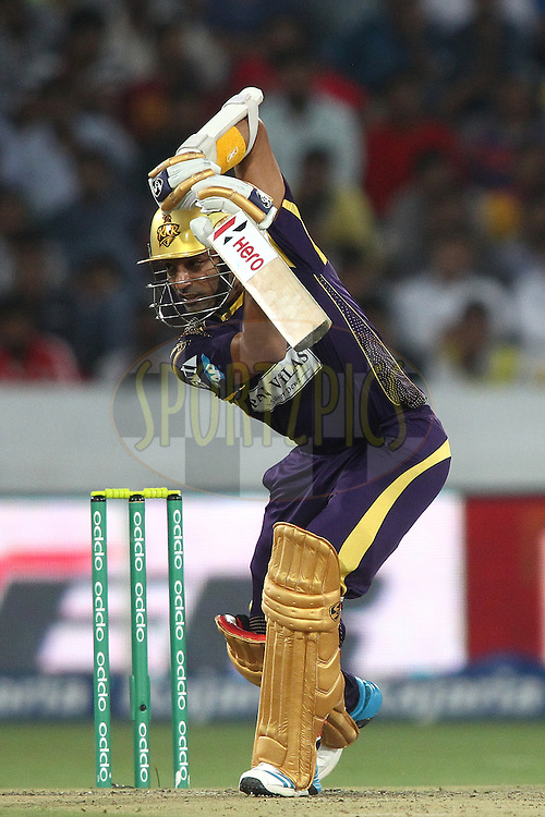 Robin Uthappa of the Kolkata Knight Riders drives a delivery during the first semi final match of the Oppo Champions League Twenty20 between the Kolkata Knight Riders and the Hobart Hurricanes held at the Rajiv Gandhi Cricket Stadium, Hyderabad, India on the 2nd October 2014<br /> <br /> Photo by:  Shaun Roy / Sportzpics/ CLT20<br /> <br /> <br /> Image use is subject to the terms and conditions as laid out by the BCCI/ CLT20.  The terms and conditions can be downloaded here:<br /> <br /> http://sportzpics.photoshelter.com/gallery/CLT20-Image-Terms-and-Conditions-2014/G0000IfNJn535VPU/C0000QhhKadWcjYs