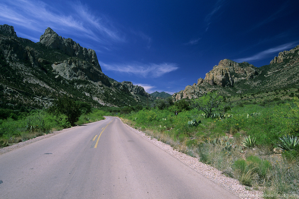 Road leading into Cave Creek Canyon, Coronado National Forest, Arizona