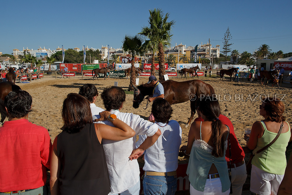 12/08/2016. A man display a racing horse for stakes during the beach horse races on August 12, 2016 in Sanlucar de Barrameda, Cadiz province, Spain. Sanlucar de Barrameda yearly horse races traditional origin started with informal races of horse's owners delivering fish from the port to the markets. But the first formal races date back to 1845 and they are the second oldest in Spain, after Madrid. The horse races take place near the Guadalquivir river mouth during August