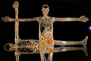 Transparent slices of male body at Gunther von Hagens' Body Worlds exhibit. Body Worlds is a traveling exhibit of real, plastinated human bodies and body parts. Von Hagens invented plastination as a way to preserve body tissue and is the creator of the Body Worlds exhibits. .