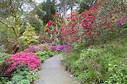 May in Bodnant Garden