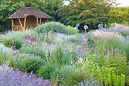 June in Bluebell Cottage Gardens