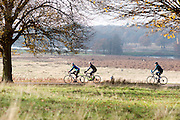 © Licensed to London News Pictures. 29/11/2014. Richmond, UK. Cyclists ride through the park.  People and animals enjoy the late Autumn sunshine in Richmond Park, Surrey, today 29th November 2014. Photo credit : Stephen Simpson/LNP
