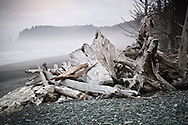 Drift logs litter rocky Rialto Beach at sunrise in the Olympic National Park near La Push, WA | August 2014