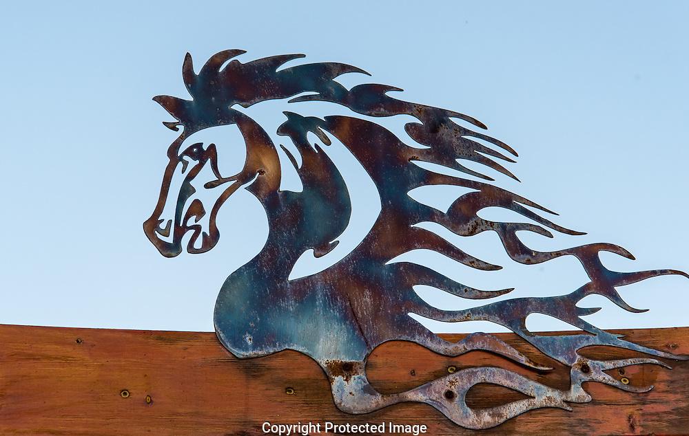 Horse Creek Ranch., Washington, America, Isobel Springett