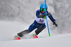 WHITLEY James, LW5/7-3, GBR, Men's Giant Slalom at the WPAS_2019 Alpine Skiing World Championships, Kranjska Gora, Slovenia