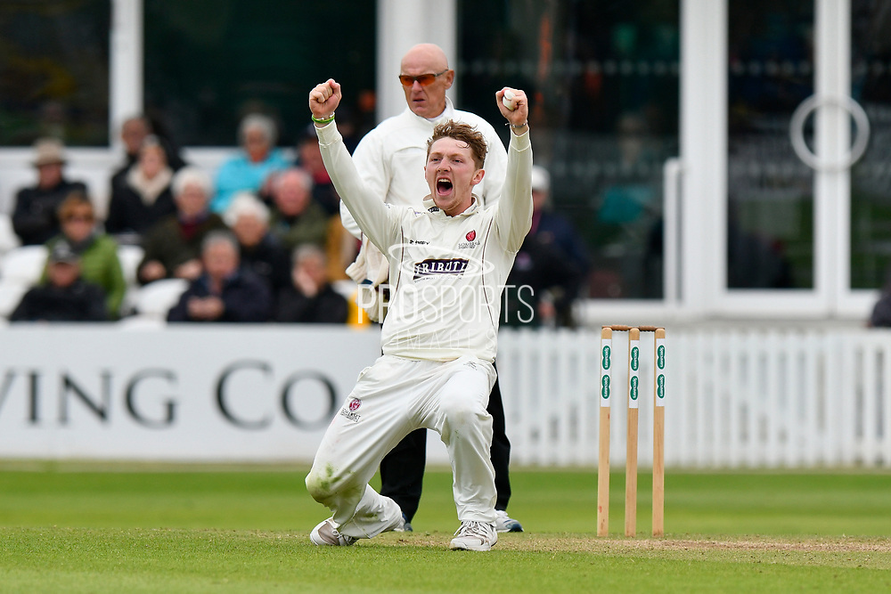 Wicket - Dom Bess of Somerset celebrates taking the wicket of Rilee Rossouw of Hampshire during the opening day of the Specsavers County Champ Div 1 match between Somerset County Cricket Club and Hampshire County Cricket Club at the Cooper Associates County Ground, Taunton, United Kingdom on 11 May 2018. Picture by Graham Hunt.