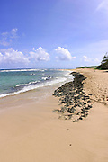 Kawailoa Bay, Mahaulepu Beach, Kauai, Hawaii<br />