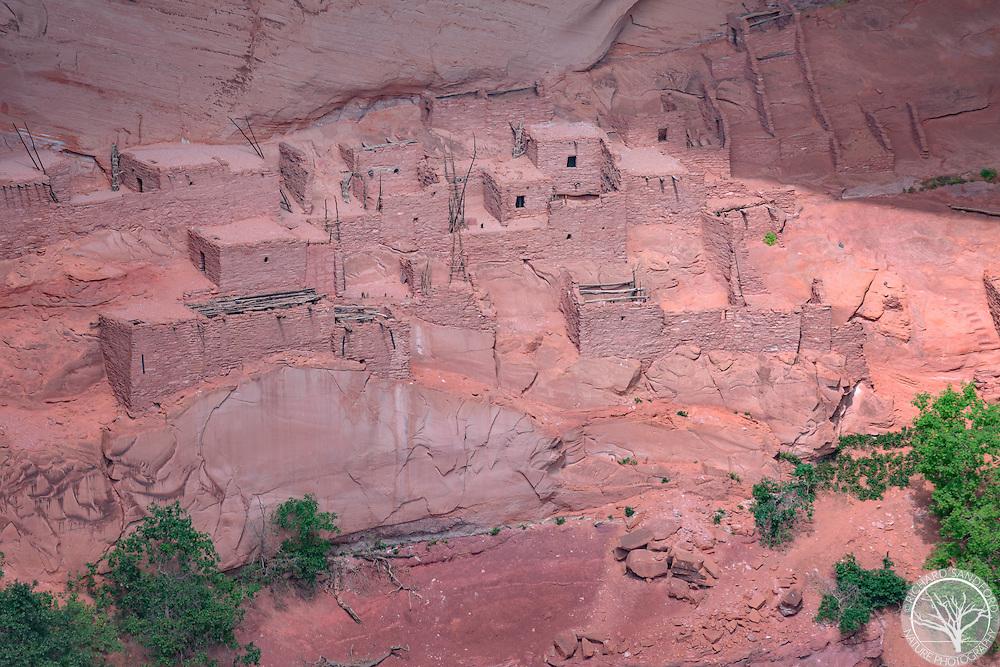 Betatakin dwelling, Navajo National Monument, Arizona