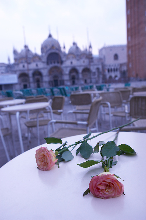 Cafe table with roses at dawn in front of an out of focus St. Mark's Basilica, Venice, Italy