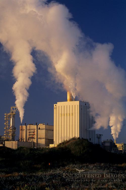 Pulp Mill and steam clouds at sunrise near Manila, Samoa Peninsula, Humboldt County, CALIFORNIA