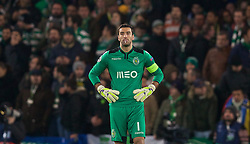 LONDON, ENGLAND - Wednesday, December 10, 2014: Sporting Clube de Portugal's goalkeeper Rui Patricio in action against Chelsea during the final UEFA Champions League Group G match at Stamford Bridge. (Pic by David Rawcliffe/Propaganda)