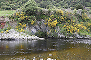 Wellington New Zealand, Dry Creek Quarry Lord of The Rings filming location