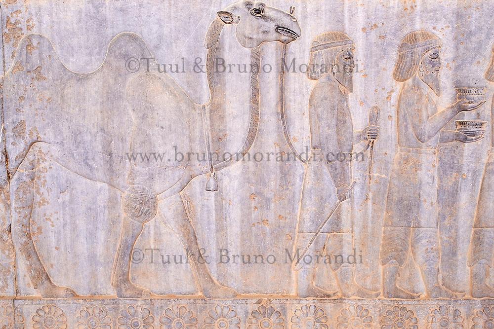 Iran, province du Fars, Persepolis, patrimoine mondial de l'UNESCO, la procession des tributaires // Iran, Fars Province, Persepolis, World Heritage of the UNESCO, procession of the tributaries