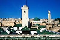 Maroc - Fès - Fès el Bali - Toits de la mosquée Karaouiyne