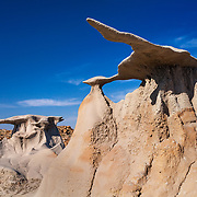 Flying Wings - Bisti Badlands - New Mexico