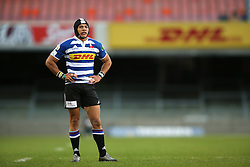 Cheslin Kolbe of Western Province during the Currie Cup Premier Division match between the DHL Western Province and the Pumas held at the DHL Newlands rugby stadium in Cape Town, South Africa on the 17th September  2016<br /> <br /> Photo by: Shaun Roy / RealTime Images