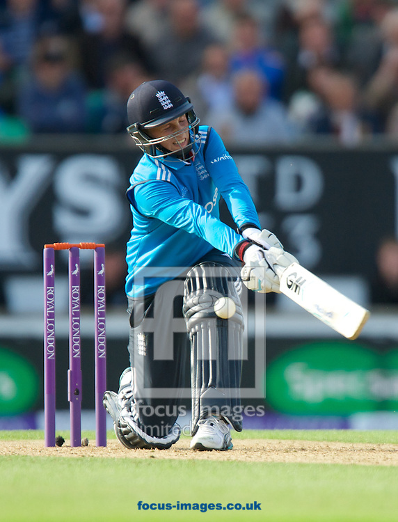 Joe Root of England batting during the Royal London One Day Series match at the Kia Oval, London<br /> Picture by Alan Stanford/Focus Images Ltd +44 7915 056117<br /> 22/05/2014