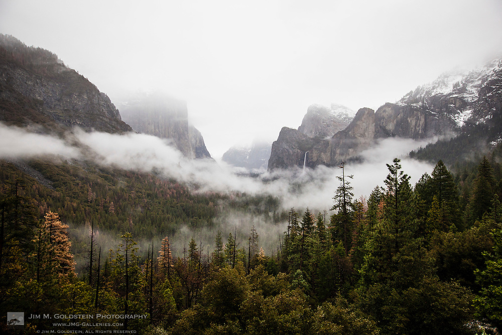Fog Rises Above Yosemite Valley, Yosemite National Park
